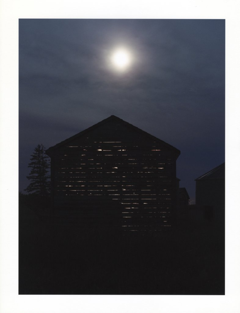 "SHED Light by Tracy Peters. Archival inkjet print, edition 1/5, 14 x 11"", 2013/14."