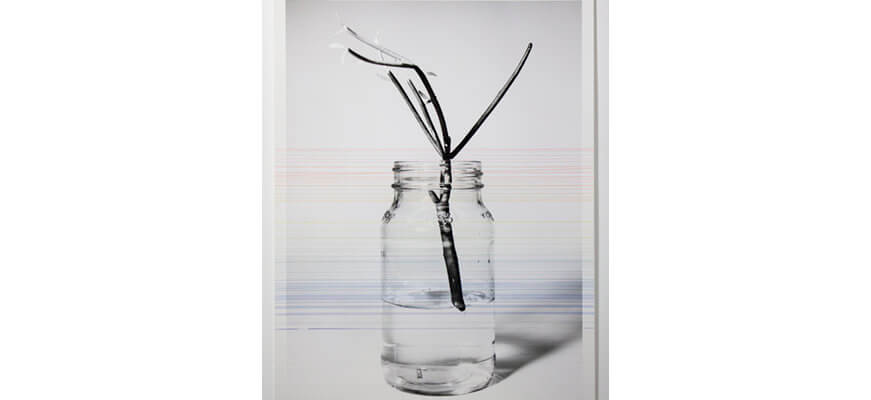 Still image from a video work by April Dean. In this still, a print of a black and white image has colourful paint streaked in thin lines horizontally across it. The paint is in all the colours of the rainbow. The image is a plant cutting floating in a glass jar with water.