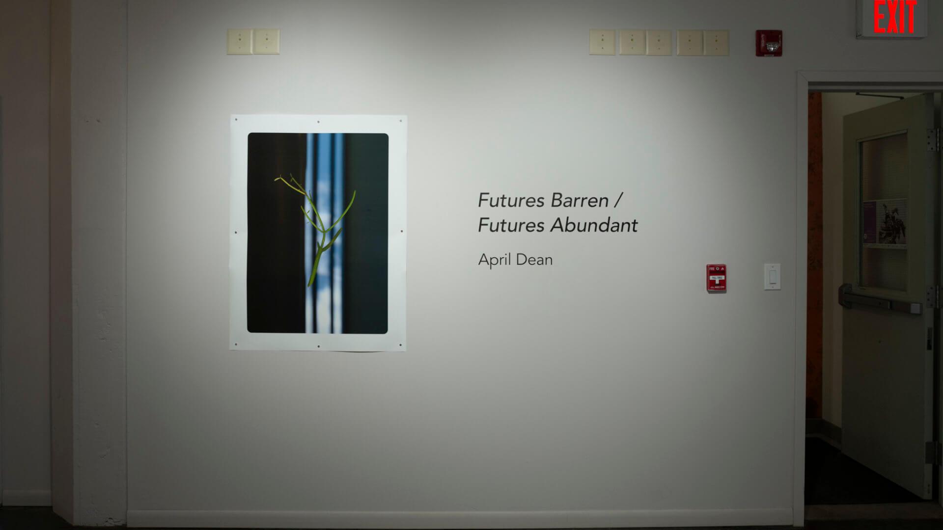 Installation view of Futures Barren/Futures Abundant by April Dean. Image credit: Sarah Fuller.